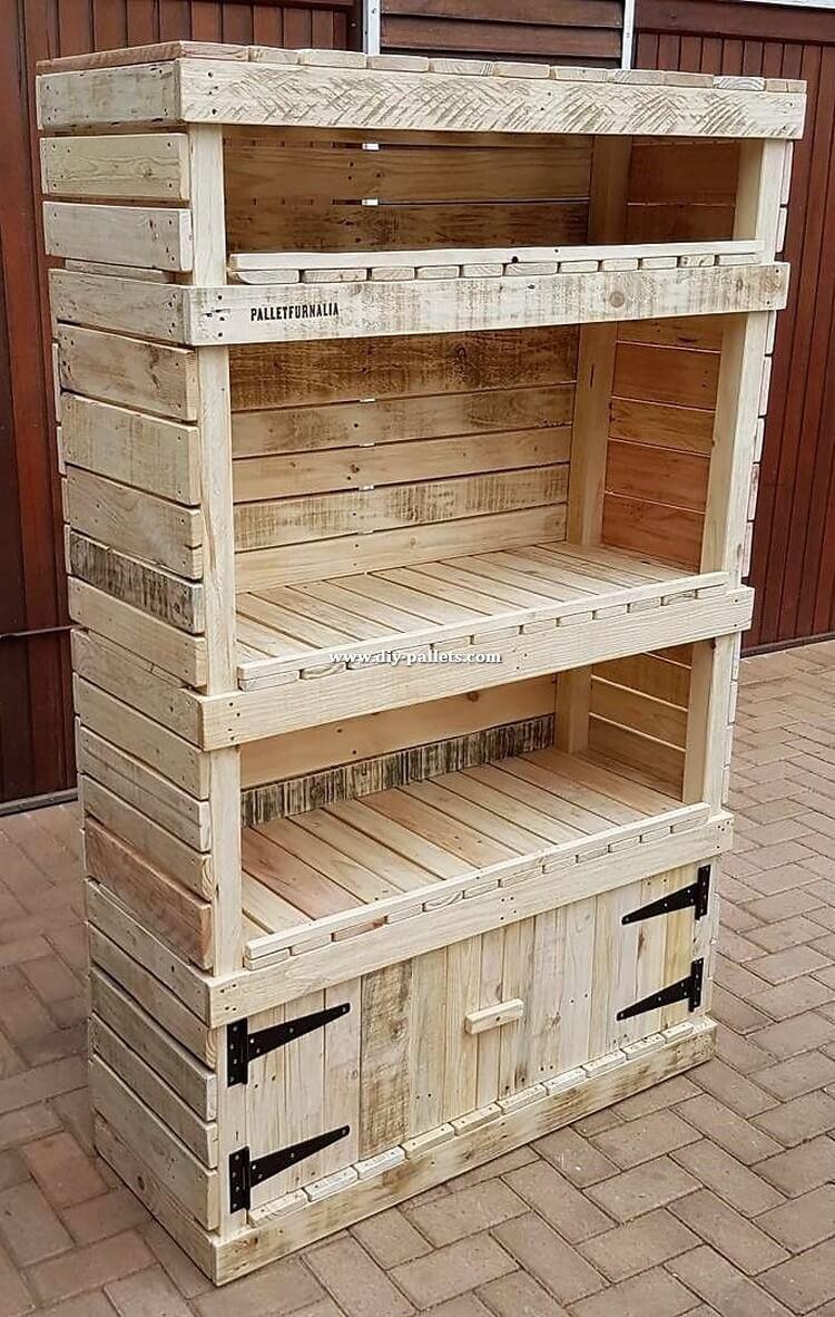Old Pallet Shelving Cabinet