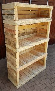 Pallet Shelving Cabinet Idea