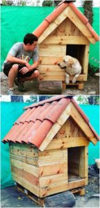 Pallet Wood Pet House